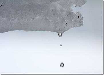 101224_dripping_snowmelt