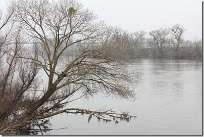 110117_sacramento_river