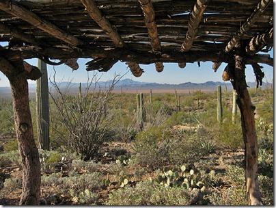 071218_desert_museum_vista