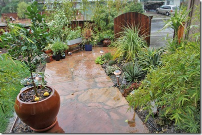 110217_rain_front_yard