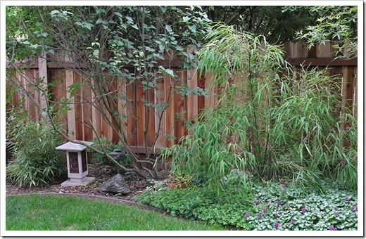 110514_backyard2c