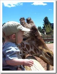 caleb & giraffe