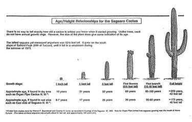 CactusFACTSage