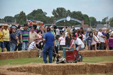 goatrace_crowd_2010