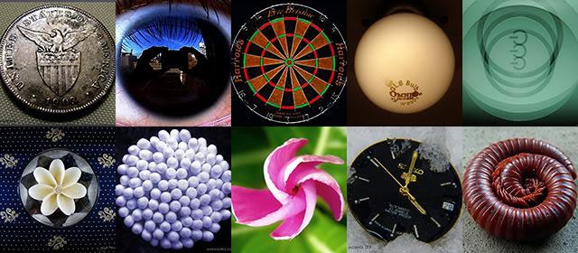 Circle in Square Collage c/o Spreketek