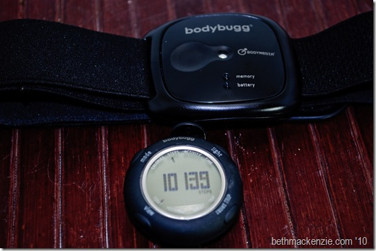 bodybugg-1