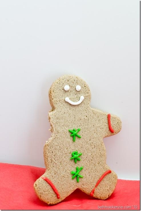 xmas cookies-018