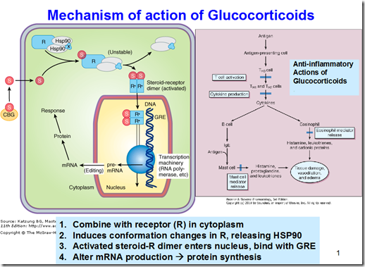 glucocorticosteroid drugs
