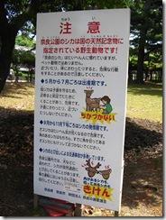09Japan-Nara 096