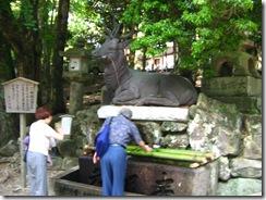 09Japan-Nara 286