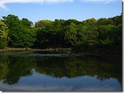09Japan-Nara 304