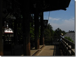 09Japan-Nara 239