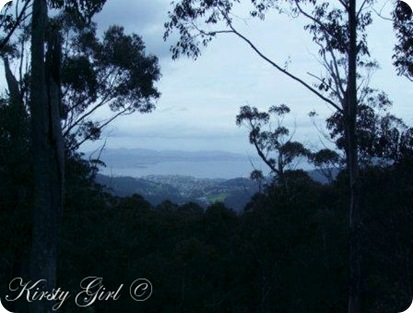 Mt. Wellington Track #10