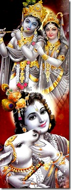 Lord Krishna pastimes