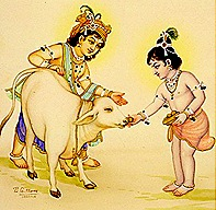 Krishna and Balarama tending to a cow