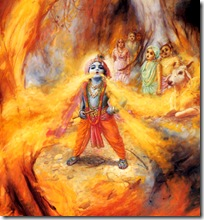 Krishna devouring a forest fire