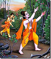 Rama and Lakshmana searching for Sita