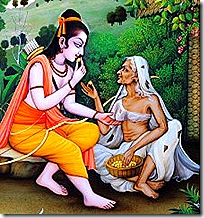 Rama eating the fruits offered to Him