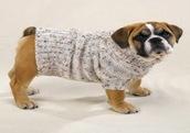 dog sweater 1