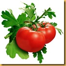 skin-care-tecniques-with-the-humble-tomato