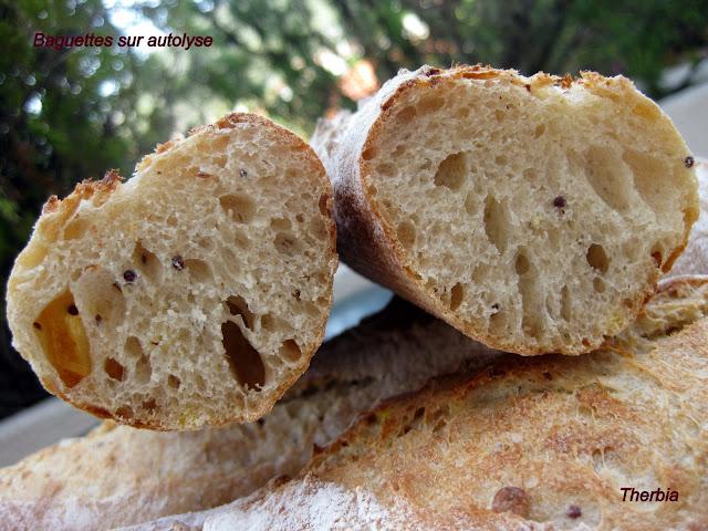 Baguettes sur autolyse IMG_0098