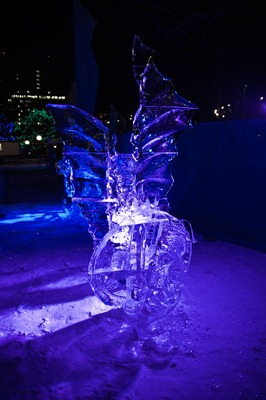 DSC_0724_ice