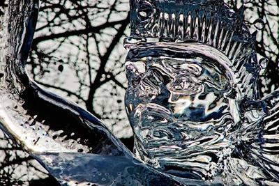 DSCF3464_ice
