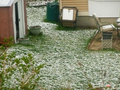 DSCF4348_snow[1]