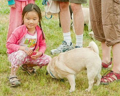 DSC_2895_kids_and_pugs[1]