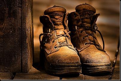 DSC_8909_boots_draganizer_800[1]
