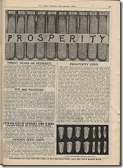 seed catalog prosperity corn