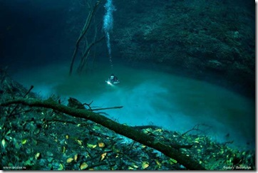 sungai-di-dalam-laut-mexico
