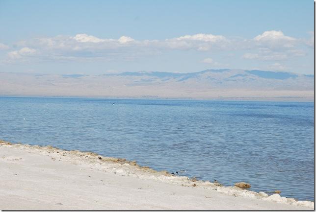 02-08-10 D Salton City Salton Sea 010