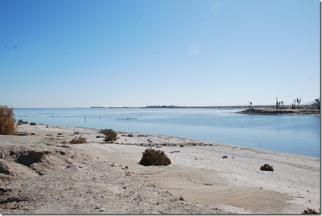 02-08-10 D Salton City Salton Sea 015