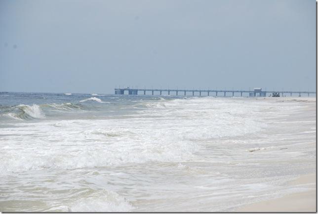 03-22-11 Gulf Shores 014