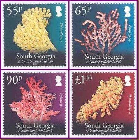 SG Corals 55p-tile