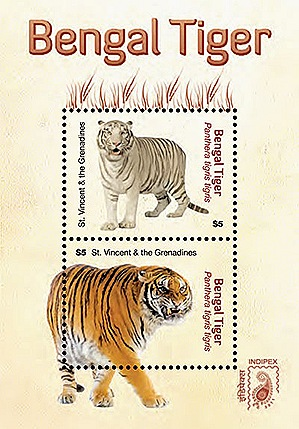 Tiger A National Symbol Of India Since Indus Valley Civilisation