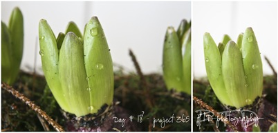 Day#18