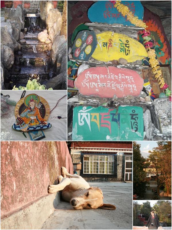 dharamsala2