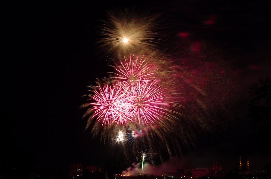 2010年7月1日楓葉國生日快樂