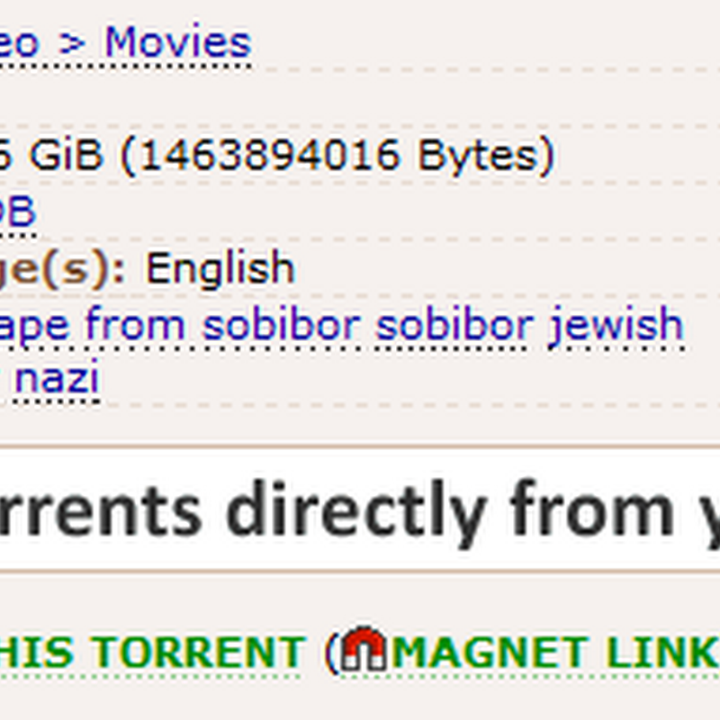 What are BitTorrent magnet links and how to create them?