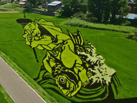 rice-paddy-art (22)