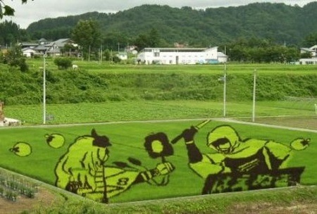 rice-paddy-art (11)