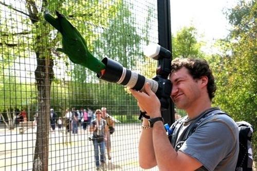 photographers (42)