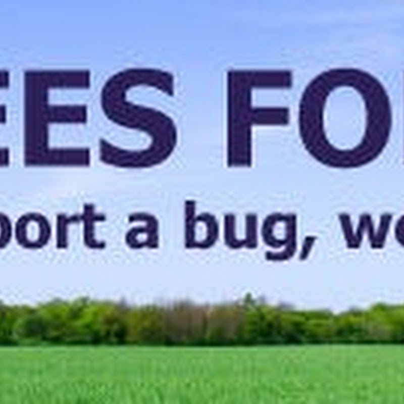 Software company promises to plant a tree for every bug found