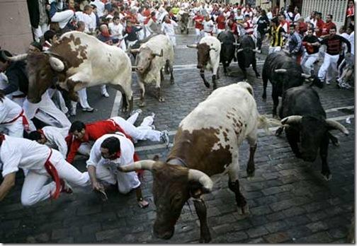 bulls-4 (1)