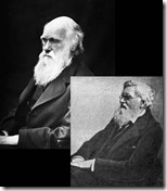Charles Darwin (acima) e Alfred Wallace (abaixo), naturalistas britânicos.