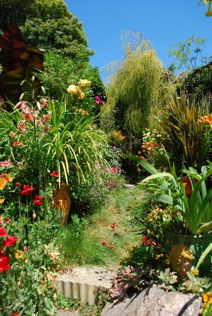 Iu7 keeyla meadows garden - The garden web forum ...