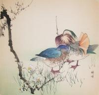 p120-kogyo-two-mandarin-ducks-and-spring-flowers-8547