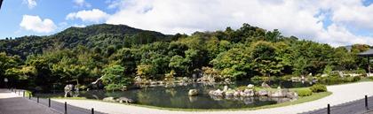 New panorama 11